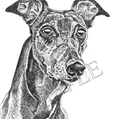 Harley-Greyhound